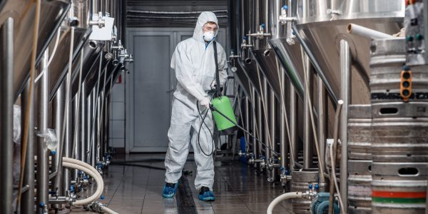 Factory cleaning. Man in protective suit and mask disinfects plant and brewing kettles during covid-19